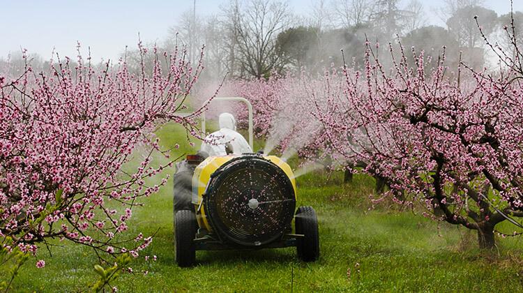 pesticidi nell'acqua